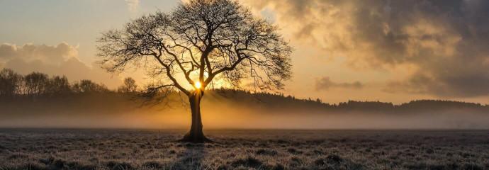huit-conseils-pour-la-predication
